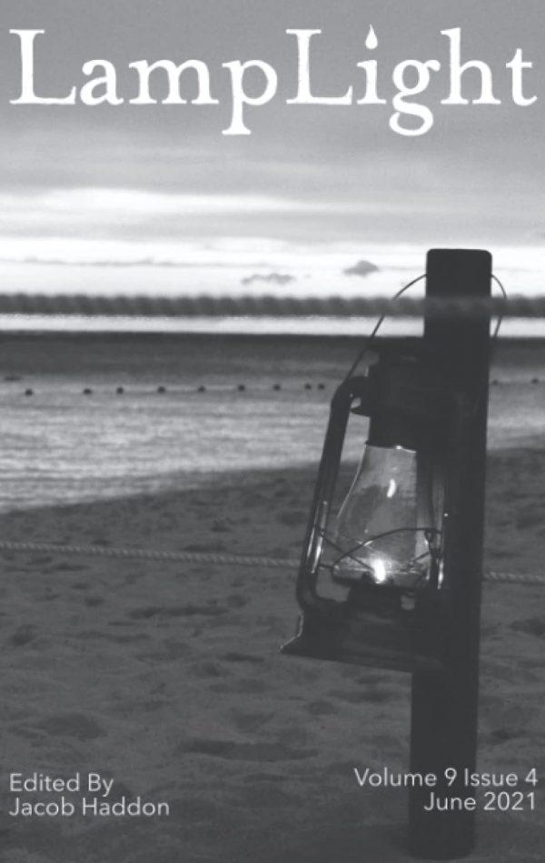 http://davidjthirteen.com/wp-content/uploads/2021/06/LampLight-600x950.jpg